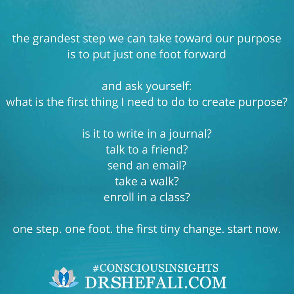 The grandest step we can take toward our purpose – Conscious Insights – November 18, 2015